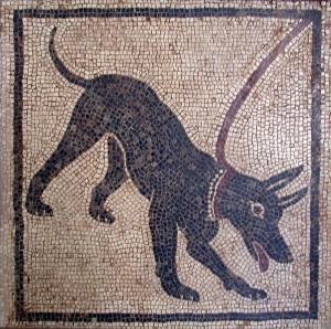 Cave_canem Hunde Mosaik