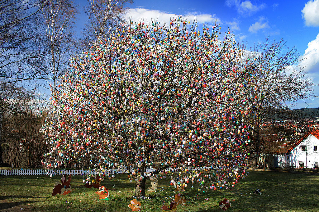Saalfelder Eierbaum (2009) - mit 9200 Eiern. Quelle: AndrewPoison - Wikipedia
